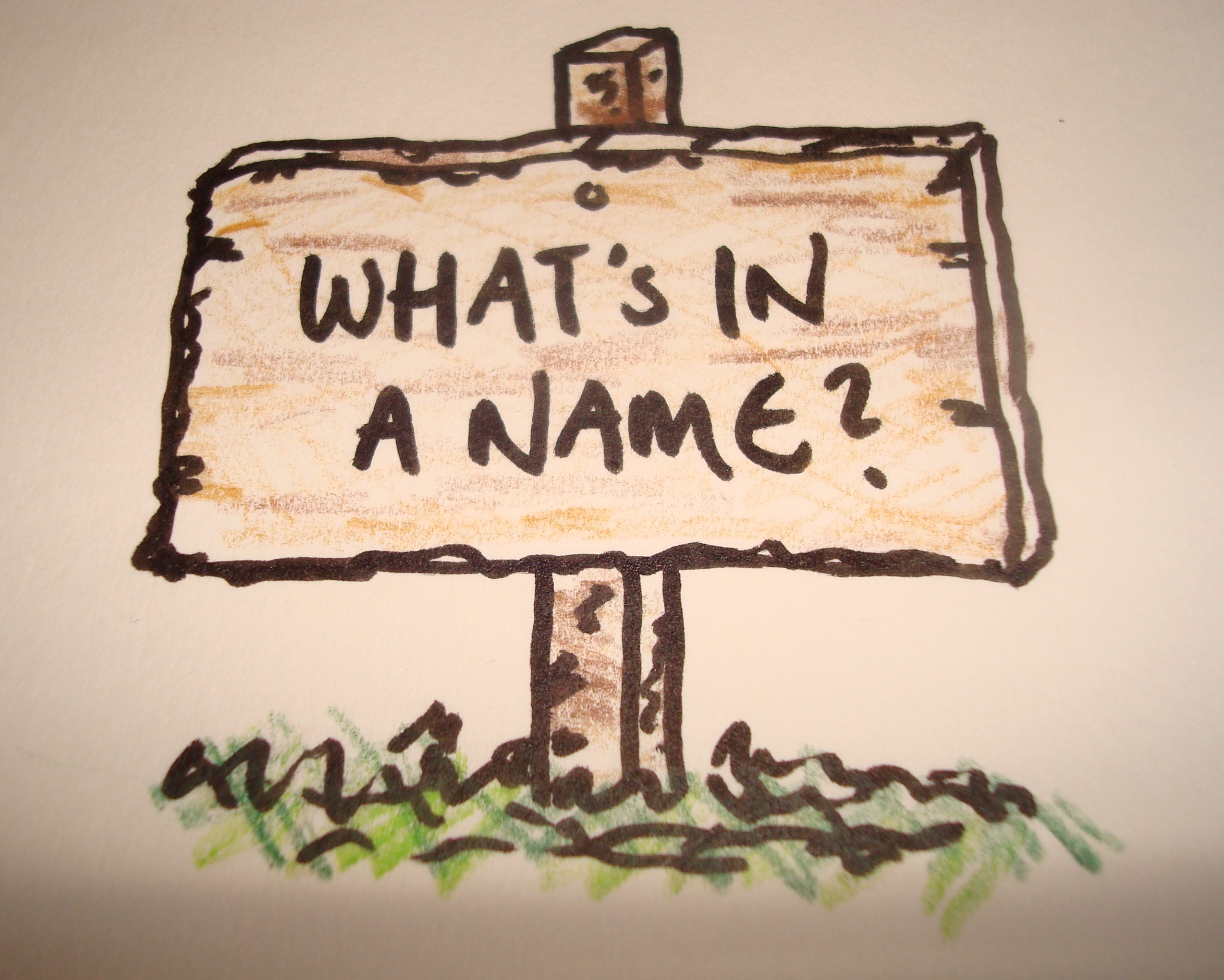 What's In A Name Blog